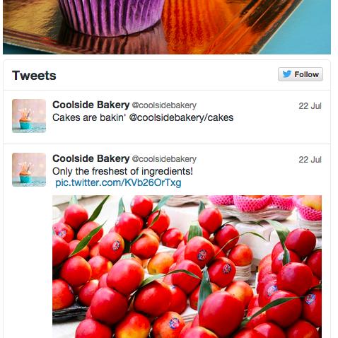 Example Twitter User Timeline widget